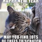 Cat Says Happy new year 2015