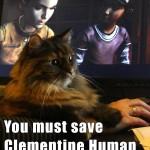 cat memes - Walking Dead - Clementine